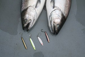 Two of several keeper-size Chinook that fell for 2-ounce jigs bounced along the bottom in 50 to 60 feet of water. From left: Point Wilson Candlefish jig, Yellow Bird KandleFish, Luhr Jensen Crippled Herring, Point Wilson Anchovy jig.