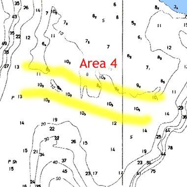 yellow indicates salmon areas