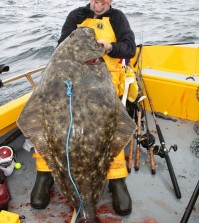 Halibut Anglers: Drift or Anchor?