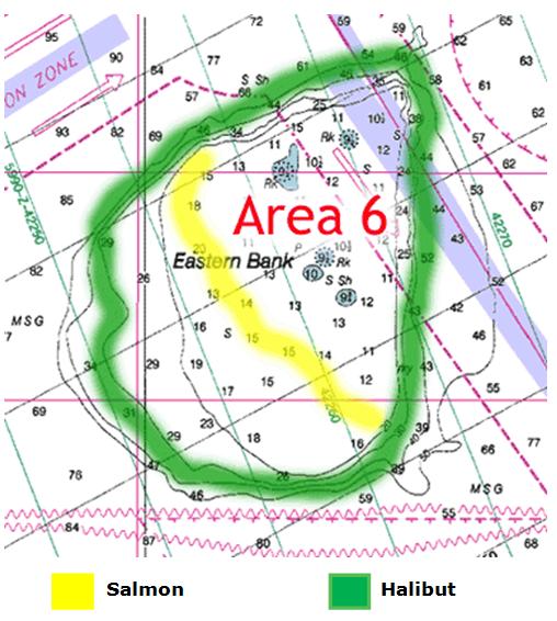 area6