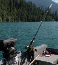 All Purpose Salmon Rods