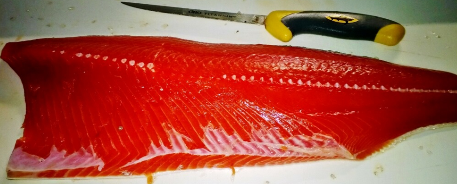"A fresh, clean and almost ""candy like"" coho filet ready for the grill."