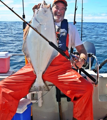 The author was able to reach this shallow-water chicken halibut with a small pipe jig fished on relatively light tackle. (Harley Graves photo)