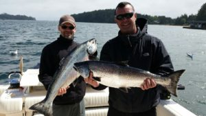 These salmon were landed on lighthouse bank and long beach. Guide Alan had guests using needle fish hootchies