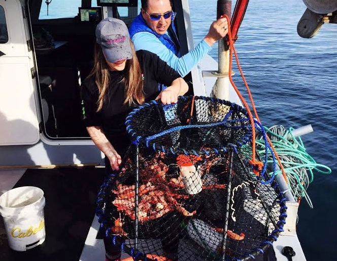 Here they come over the rail! Having a good hauler makes a lot of difference in the Prawn game.